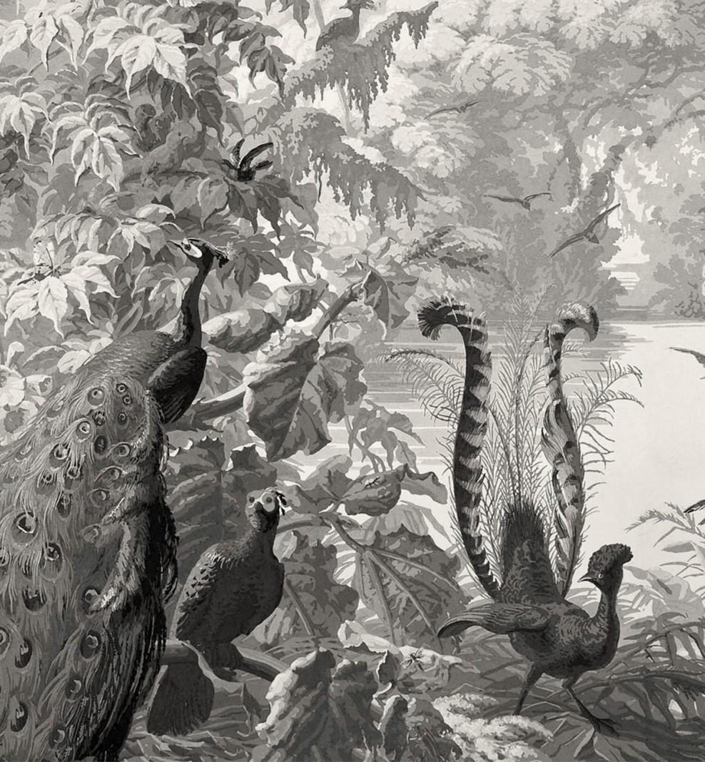 Panoramique Le Brésil monochrome . 1862