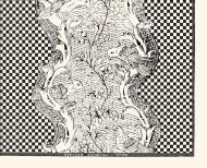 Planche dominotée Damier noir et blanc A3 . 1750
