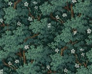 Jasmine . 1799 - - Le Grand Siècle
